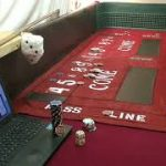 Craps Strategy   Beginners betting  Field Bets   Small buy in