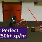 [OSRS] In-Depth Efficient Blackjacking Guide – Tick-perfect Low Click Intensity (PC and Mobile)