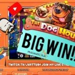 Big Win From The Dog House Slot!!