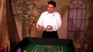 How to Play Craps : How to Play Craps