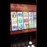 Betting Max $180 dollars a hit on poker machine –  big 10K + WINNNNN