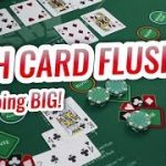 LIVE High Card Flush Basics | Casino High Card Flush Let's Play #4