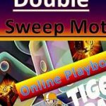 Double Jet ✈ Sweep Motion 🏈 Craps Betting Strategy for the Professional Player