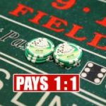 How to Play Craps | Sky Ute Casino – Durango TV