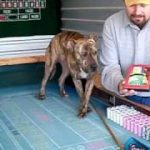 Learn How to Play Craps Video Putting Odds on the Craps Table