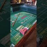 My 8 foot craps table