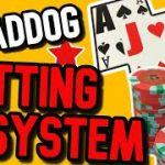 MadDog Blackjack Betting System – Will it work?