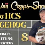 The HCS Hedgehog Craps Betting Strategy: Perfect for a $15 min Craps Table.