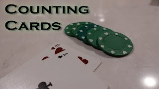 Learning To Count Cards in BlackJack